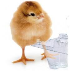 Для чего нужна упаковка для яиц?