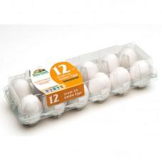 Упаковка для яиц Vision Jumbo 1x12