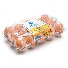 Упаковка для яиц Vision 1x15 small