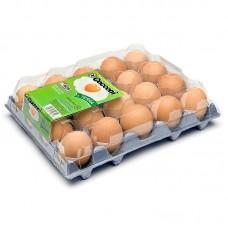 Упаковка для яиц Boxtop 1x20