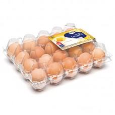 Упаковка для яиц Traypack 1x20